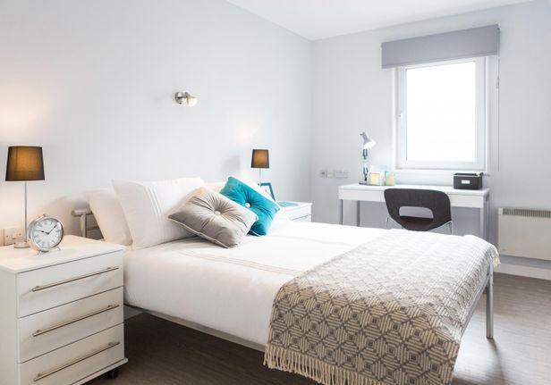Hall iQ Kerria Apartments - 9
