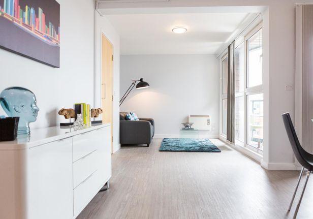 Hall iQ Kerria Apartments - 7