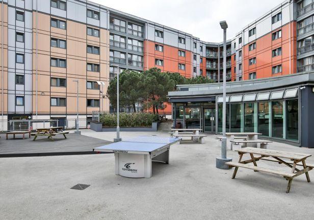 Hall iQ Kerria Apartments - 1